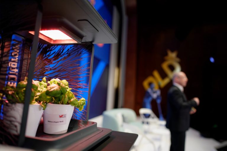 LED, agriculture, horticulture, intelligent, Alexander Gerfer, Würth, presentation