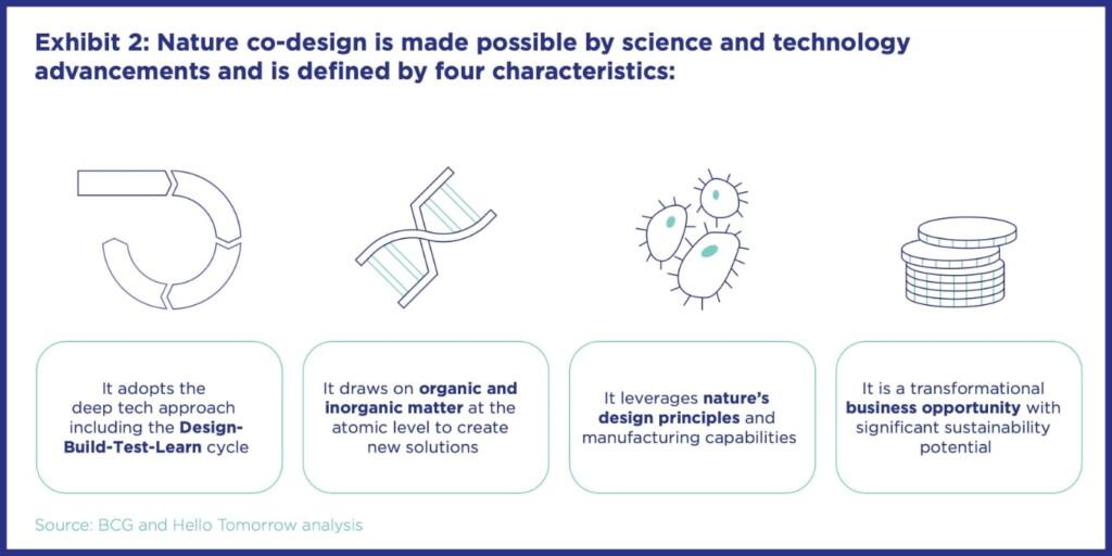 sustainability, circular economy, nature co-design, Hello Tomorrow, future, business